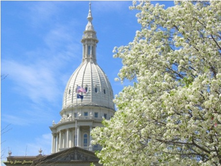 Capitol Dome in the Spring