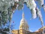 Winter at the Capitol